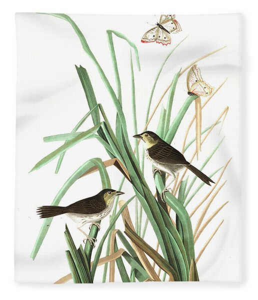 Mac Gillivrays Finch Fleece Blanket