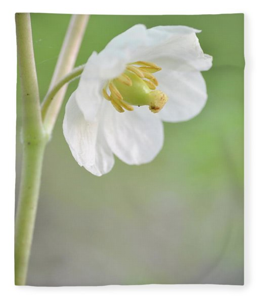 Mayapple Flower Fleece Blanket