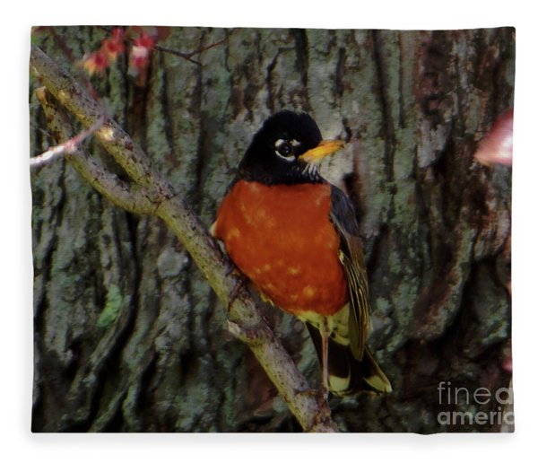 Michigan State Bird Robin Fleece Blanket