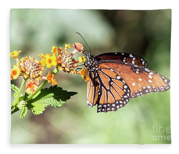Monarch Fleece Blanket