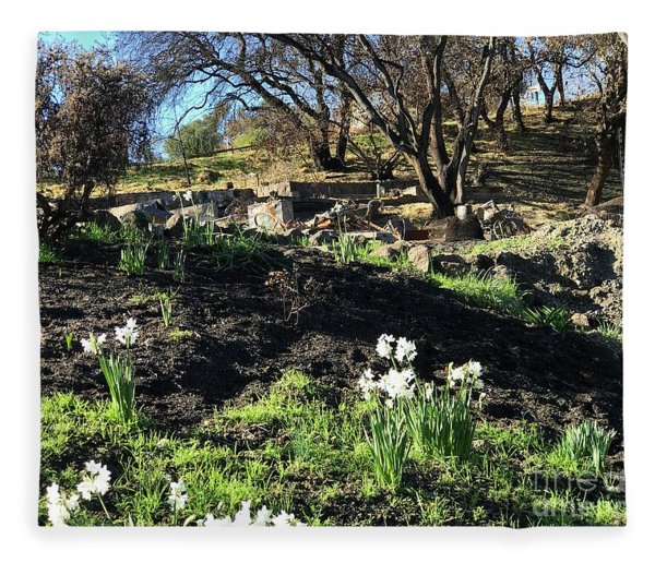 New Growth From Sandra Rosa Fires Fleece Blanket