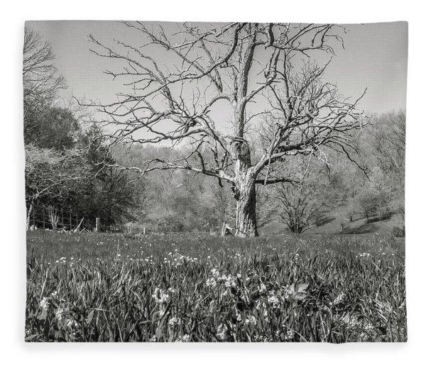 Old Oak Fleece Blanket