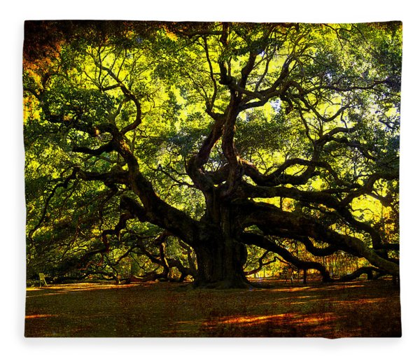 Old Old Angel Oak In Charleston Fleece Blanket