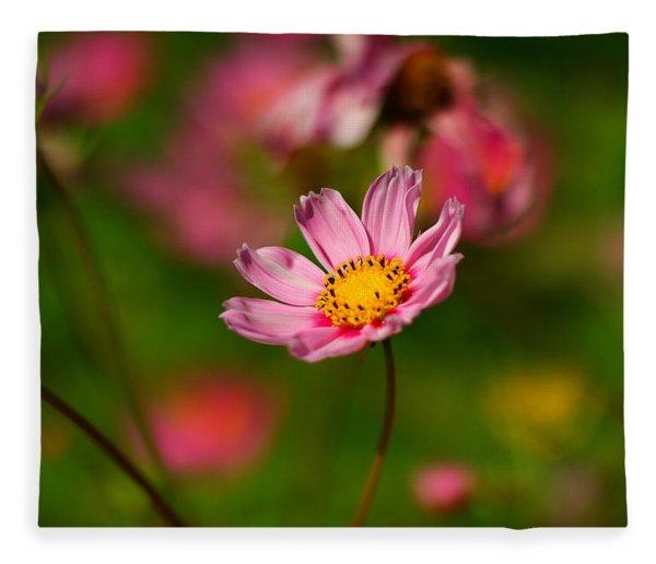 One Simple Beauty Fleece Blanket