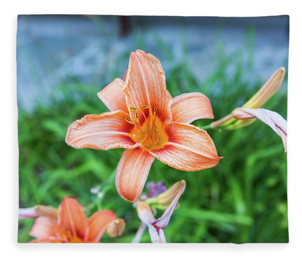 Orange Daylily Fleece Blanket