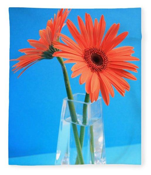 Orange Gerberas In A Vase - Aqua Background Fleece Blanket