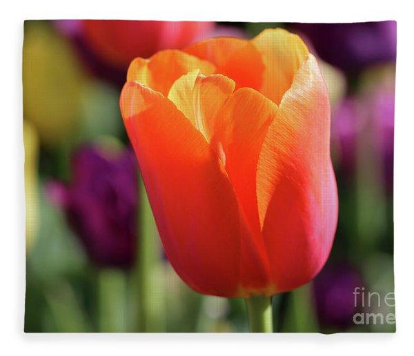Orange Tulip In Franklin Park Fleece Blanket