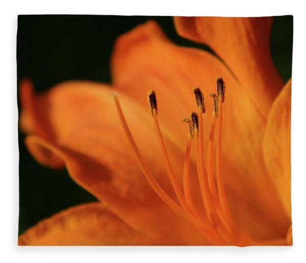 Orange Wave 3096 H_2 Fleece Blanket