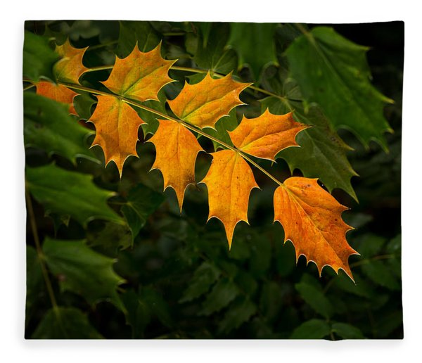 Oregon Grape Autumn Fleece Blanket