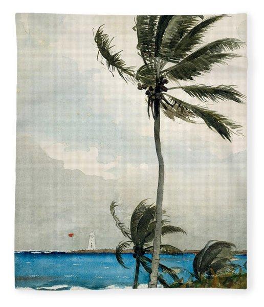 Palm Tree, Nassau, 1898 Fleece Blanket