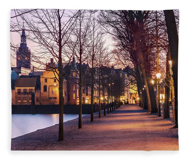 Fleece Blanket featuring the photograph Path By A Pond - The Hague by Barry O Carroll