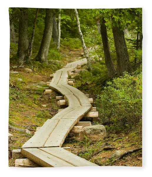 Path Into Unknown Fleece Blanket