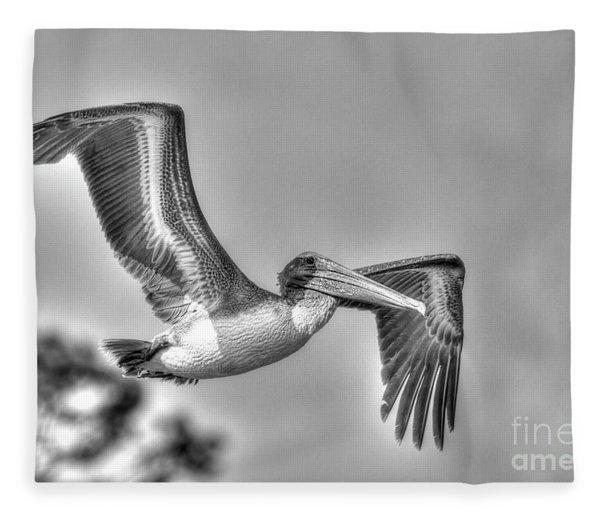 Pelican-4443 Bnw Fleece Blanket