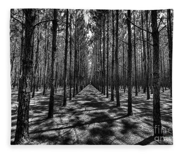 Pine Plantation Wide Fleece Blanket