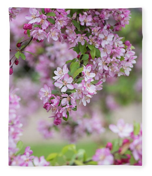 Pink Apple Blossom Fleece Blanket