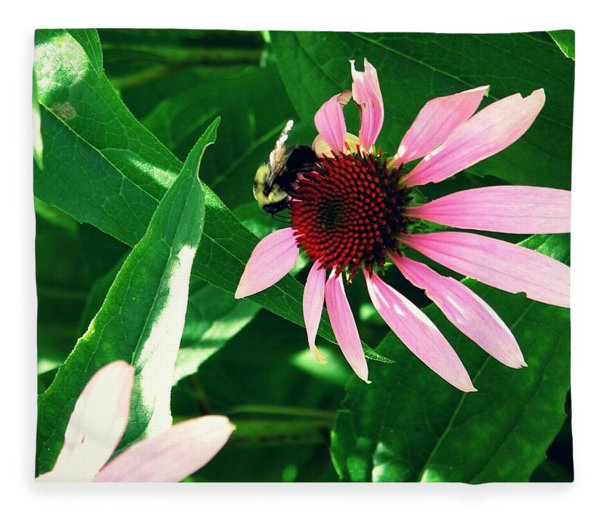Pollinize Fleece Blanket