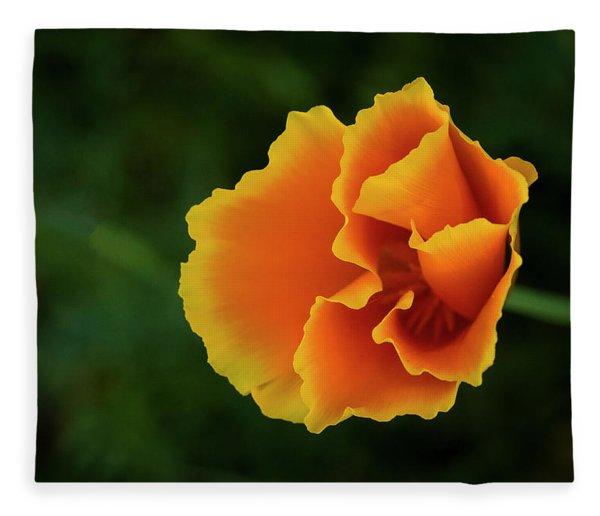 Poppy Orange Fleece Blanket