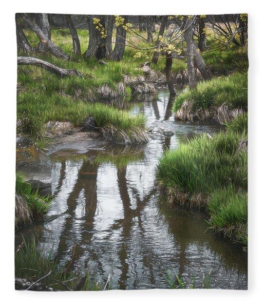 Quiet Stream Fleece Blanket