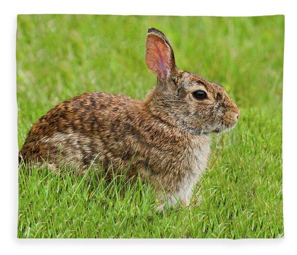 Rabbit In A Grassy Meadow Fleece Blanket