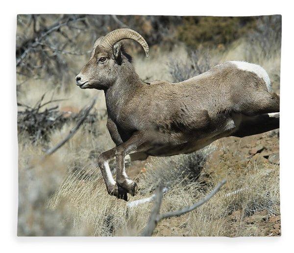 Ram In A Hurry Fleece Blanket