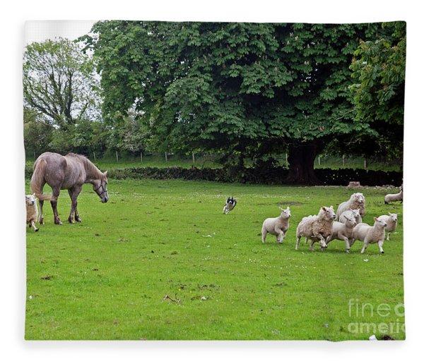 Rounding Up The Sheep Fleece Blanket