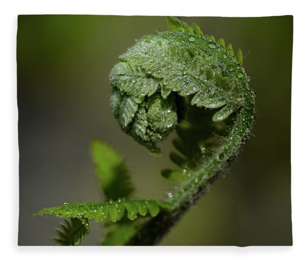 Reaching Out Fleece Blanket