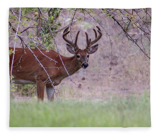 Red Bucks 2 Fleece Blanket