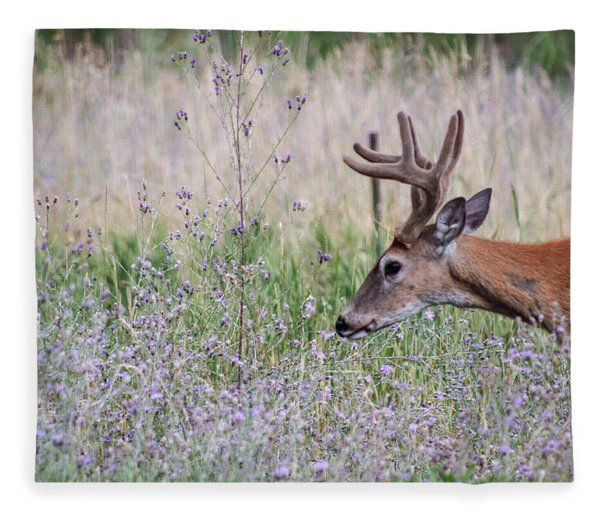 Red Bucks 4 Fleece Blanket