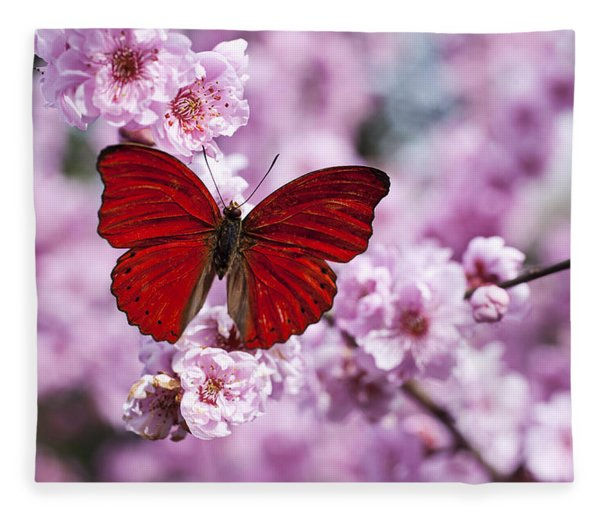 Red Butterfly On Plum  Blossom Branch Fleece Blanket