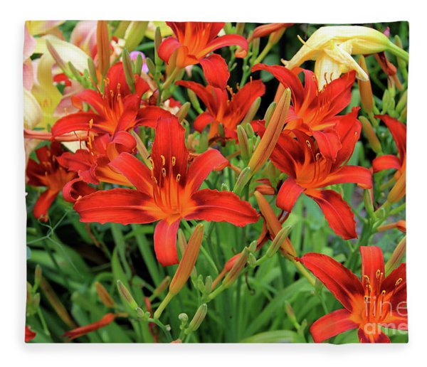 Red Daylilies Fleece Blanket