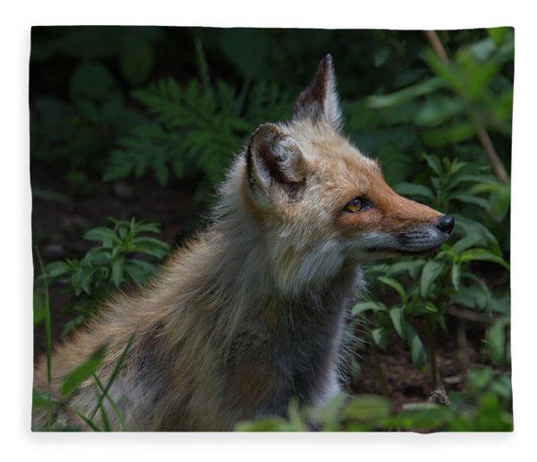 Red Fox In The Forest Fleece Blanket