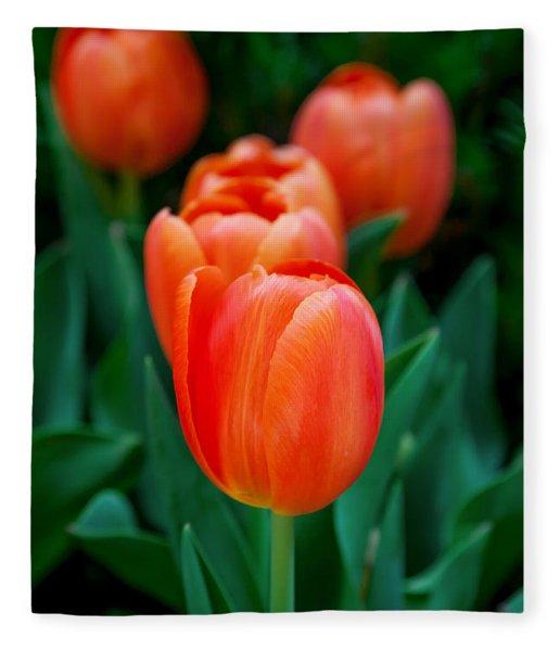 Red Tulips Fleece Blanket