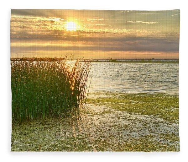 Reeds In The Sunset Fleece Blanket