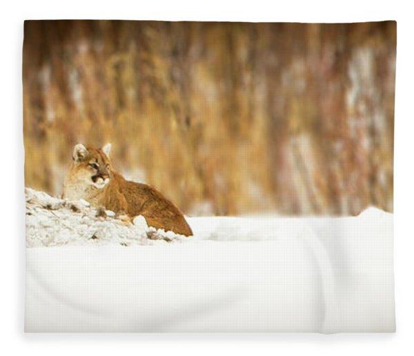 Rivers Treasure  Fleece Blanket