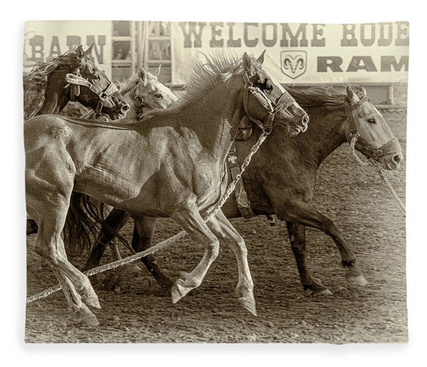 Rodeo Horses - Antique Sepia Fleece Blanket