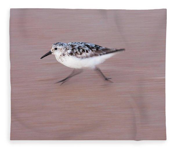 Sanderling On The Run Fleece Blanket