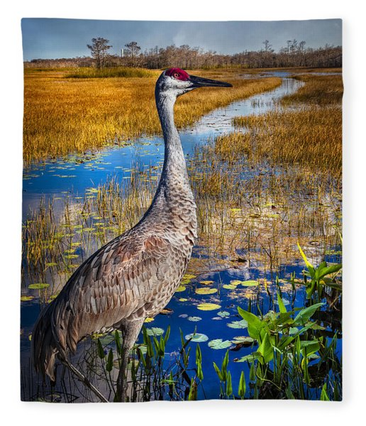 Sandhill Crane In The Glades Fleece Blanket