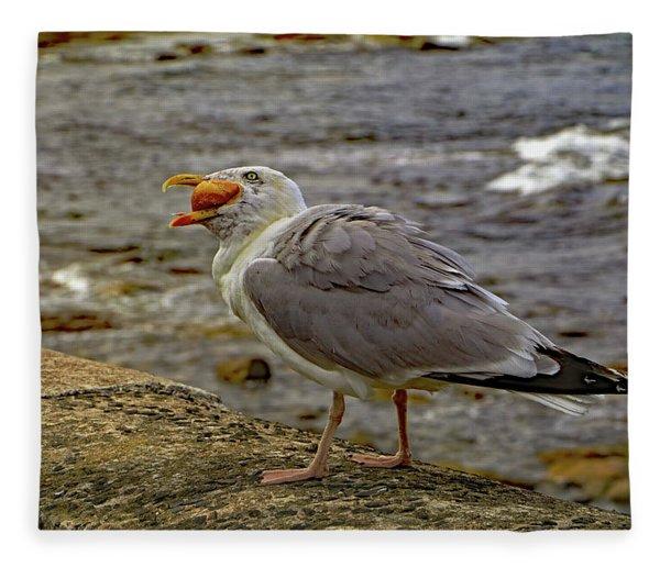 Seagull Feeding Fleece Blanket