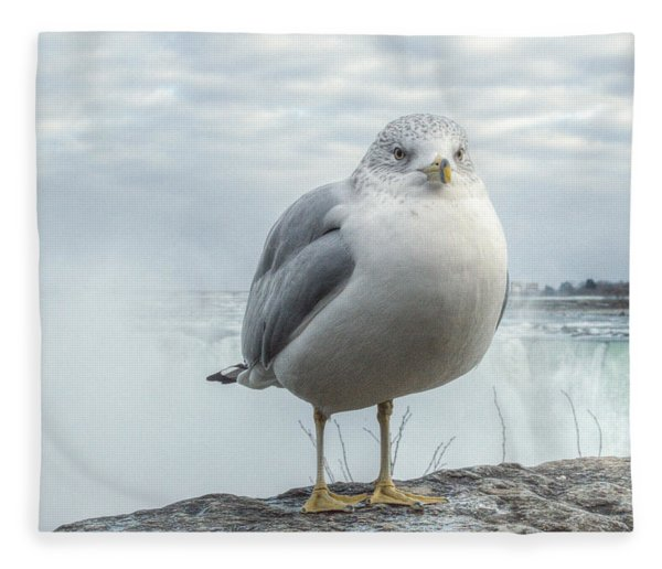 Fleece Blanket featuring the photograph Seagull Model by Garvin Hunter