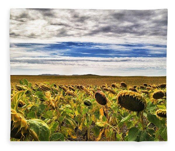 Seasons In The Sun Fleece Blanket