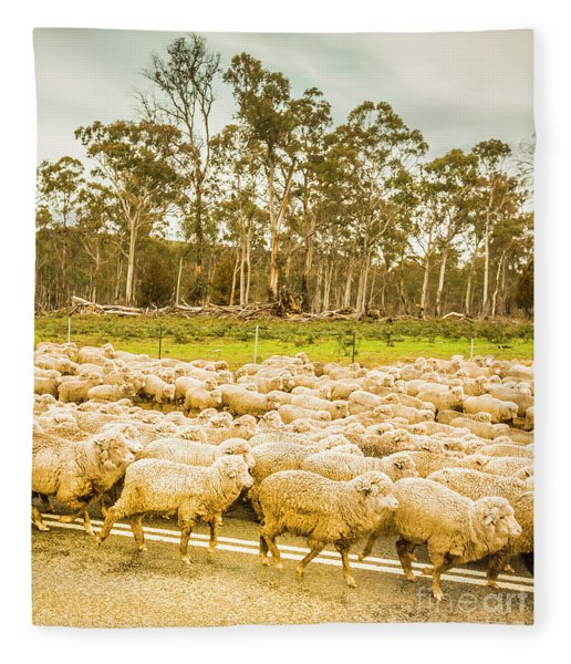 Sheep Country Fleece Blanket