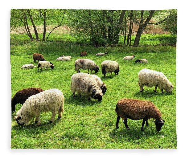 Sheep On Meadow Fleece Blanket