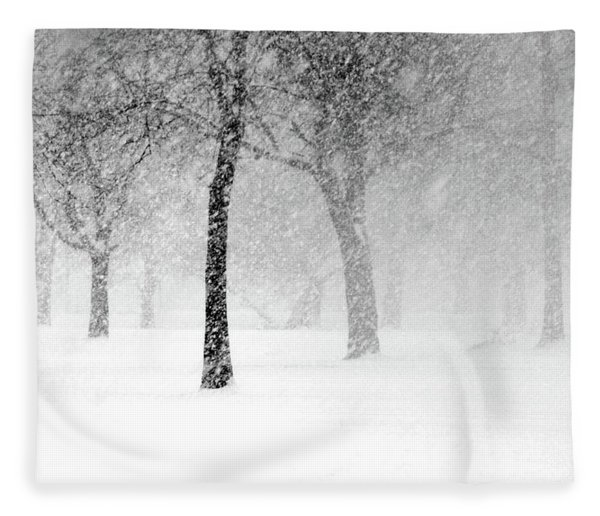 Snow Storm At Starved Rock Fleece Blanket