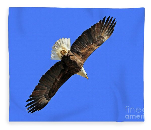 Soaring Into The Blue  Fleece Blanket