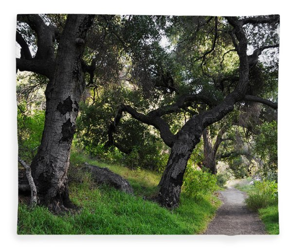 Solstice Canyon Live Oak Trail Fleece Blanket