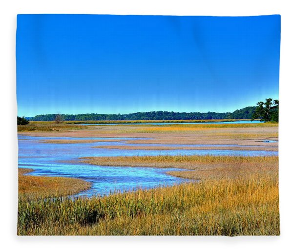 South Carolina Lowcountry H D R Fleece Blanket