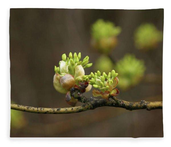 Spring Buds 9365 H_2 Fleece Blanket