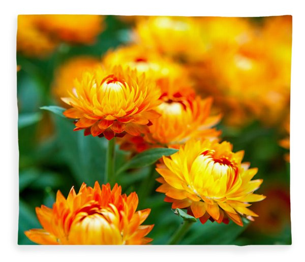 Spring Flowers In The Afternoon Fleece Blanket