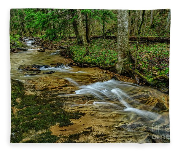 Spring Green Along Anthony Creek Fleece Blanket