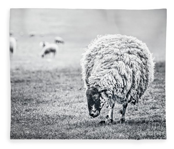 State Of Graze Fleece Blanket